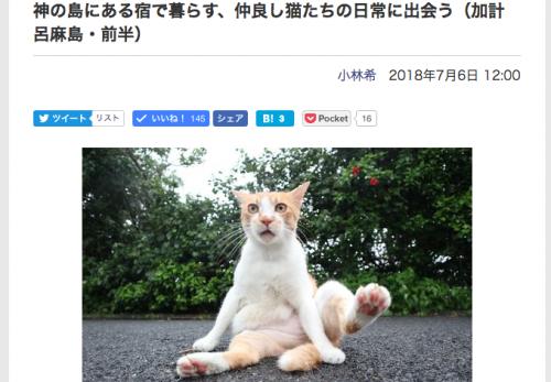 【加計呂麻島・前半】デジカメWatch掲載「カメラ旅女の全国ネコ島めぐり」公開しました