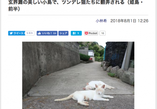 【姫島・前編】デジカメWatch掲載「カメラ旅女の全国ネコ島めぐり」公開しました