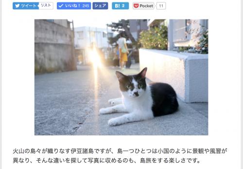 【神津島・前編】デジカメWatch掲載「カメラ旅女の全国ネコ島めぐり」公開しました