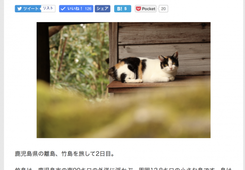 【竹島・後編】デジカメWatch掲載「カメラ旅女の全国ネコ島めぐり」公開しました