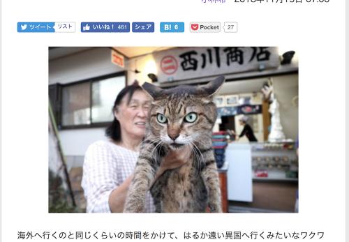 【御蔵島編・前編】デジカメWatch掲載「カメラ旅女の全国ネコ島めぐり」公開しました