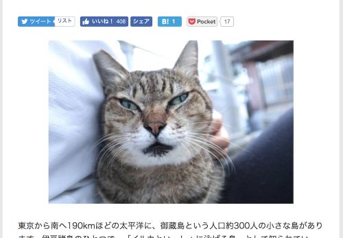 【御蔵島編・後編】デジカメWatch掲載「カメラ旅女の全国ネコ島めぐり」公開しました
