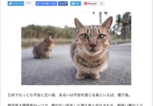 【種子島・後編】デジカメWatch掲載「カメラ旅女の全国ネコ島めぐり」公開しました