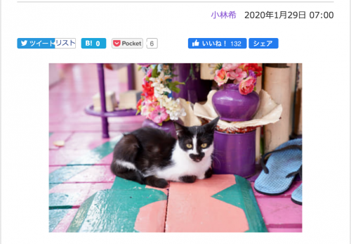 【ブルネイ・前編】デジカメWatch掲載「カメラ旅女の全国ネコ島めぐり」公開しました
