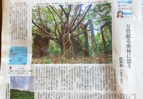 【本日11/13売り】産経新聞で連載中「島を歩く、日本を見る」